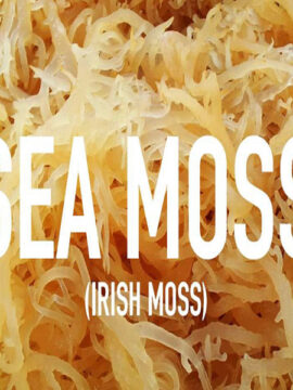 Irish Sea Moss